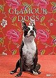 Glamour Dogs, Poster-Kalender 2012 -