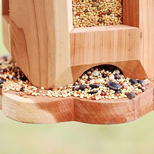 Zoom IMG-1 lsxlsd mangiatoia per uccelli in