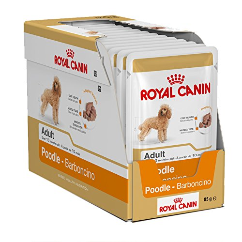 48 X ROYAL CANIN POODLE WET POUCH DOG FOOD SUPPLIED BY MALTBY'S STORES POUCHES