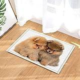 fdswdfg221 Cute Animal Decor Perros Lindos Snuggle Juntos para s de Antideslizantes Felpudo Piso de Entrada Puertas de Entrada Interiores de para de