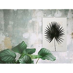 Wandkalender 2017 / Plants