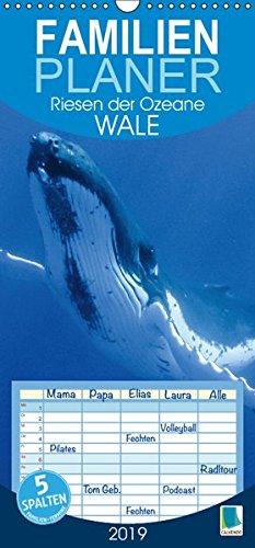 Wale: Riesen der Ozeane (Wandkalender 2019 PRO_49_format hoch): Wale: In den Tiefen der Ozeane, Familienplaner 5 Spalten (Familienplaner, 14 Seiten ) (CALVENDO Tiere)