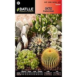 Semillas Batlle 091201BOLS - Cactus Plantas Crasas variadas