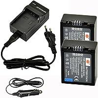 DSTE 2-pack Rechange Batterie et DC67E Voyage Chargeur pour Panasonic DMW-BLB13 Lumix DMC-G1 DMC-G2 DMC-G10 DMC-GF1 DMC-GH1 como Panasonic DMW-BLB13E DMW-BLB13GK