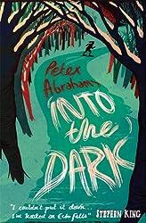 Into the Dark: An Echo Falls Mystery: 2