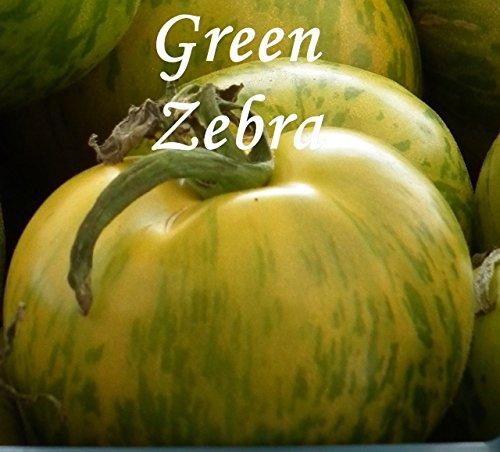 "Tomate ""Green Zebra"" - 20 Samen - grüne Tomaten !!"
