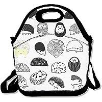 Erizo reutilizable con aislamiento bolsa para el almuerzo escuela Picnic térmico Carrying Gourmet fiambrera fiambrera contenedor