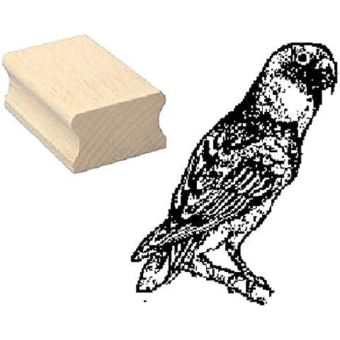 Timbro timbro in legno, motivo: Parrocchetto Parrocchetto Parrocchetto « ninfe