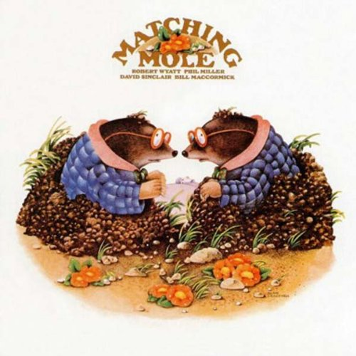 matching-mole-expanded-edition