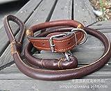 Daeou Hundehalsbänder Kortikale Traktion mit Halsband Hund Seil, Hals Umfang 40-55 cm, Breite 2,5 cm, Traktion Länge 1,2 m