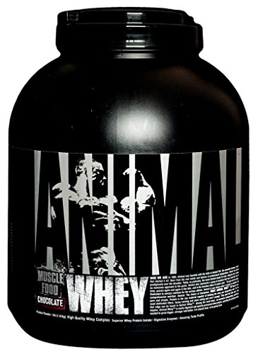 Universal Nutrition Animal Whey Protein Eiweiß Muskelaufbau 2300g Schokolade -  Chocolate