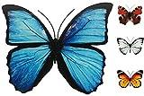 Coen Bakker Schmetterling Metall Wand Deko Bunt Garten Wandschmuck Falter Schmetterlinge, Farbe:Blau, Größe:30 cm
