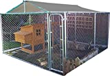 FeelGoodUK Paseo Chicken Run 3m x 3m EN COOP DE Perro DE Corral GALLINA del Conejo Cage Pen Metal Puerta Dog Run 01 ES
