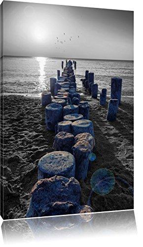 �mpfe am Meer schwarz/weiß Format: 60x40 auf Leinwand, XXL riesige Bilder fertig gerahmt mit Keilrahmen, Kunstdruck auf Wandbild mit Rahmen, günstiger als Gemälde oder Ölbild, kein Poster oder Plakat (Boller Hat)