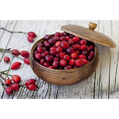 Poster 100 x 70 cm: Cranberries 4 di Andrea Haase Foto - stampa artistica professionale, nuovo poster artistico