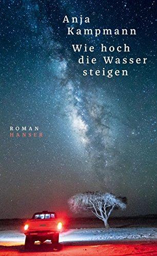 steigen: Roman ()