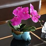 LVLIDAN Kunstblumen real touch künstliche Blume PU Orchidee Anzüge Keramikvasen Violett