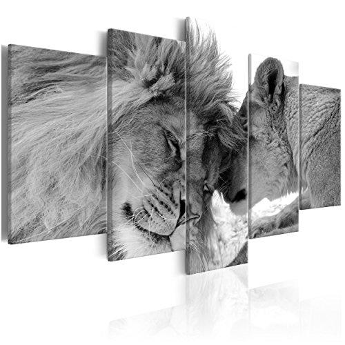 decomonkey Bilder Löwe Afrika 200x100 cm 5 TLG. Leinwandbilder Bild auf Leinwand Vlies Wandbild...