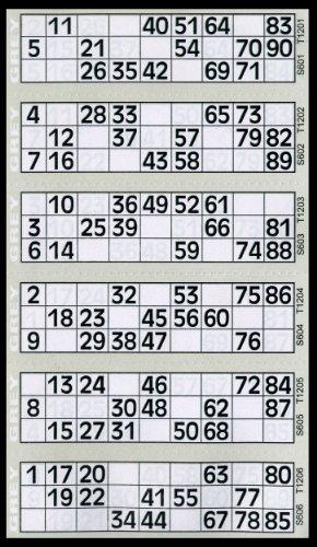 600-tickets-de-bingo-bloc-de-gris-6-a-vue-flyers
