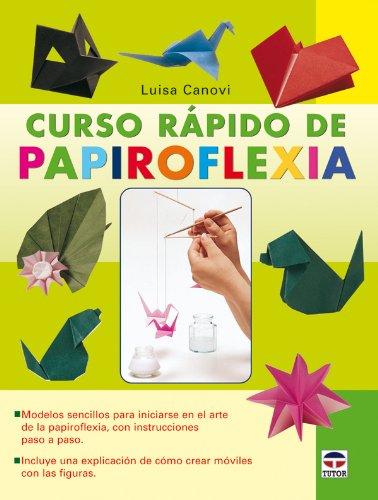 Curso rapido de papiroflexia / Origami Fast Course por Luisa Canovi