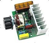 DaoRier Hochleistungs-elektronischer Regler 220V Leistungsregler 4000W SCR Regler Temperaturregelung Dimmgeschwindigkeit