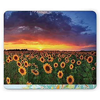 Sunflower Mouse Pad, Field of Sunflowers Sunset Dramatic Sky with Clouds Scenic Picture, Standard Size Rectangle Non-Slip Rubber Mousepad, Sky Blue Fern Green Amber 9.8 X 11.8 inch