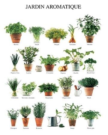 amazon.de: 1art1 45304 kräuter - jardin aromatique, küchen-kräuter ... - Poster Für Die Küche