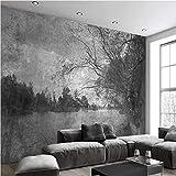 HONGYAUNZHANG Retro Stil Benutzerdefinierte Fototapete 3D Stereoskopischen Wandbild Wohnzimmer Schlafzimmer Sofa Hintergrund Wandmalereien,230Cm (H) X 310Cm (W)