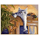 lixb DIY Bilder nach Zahlen Leinwand Digital Zeichnung Färbung Öle Malen nach Zahlen Katze auf der Schrankwand Kunst 40x50cm