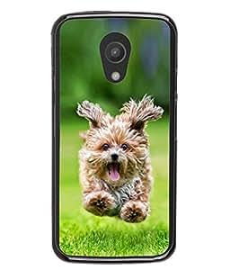 PrintVisa Designer Back Case Cover for Motorola Moto G2 :: Motorola Moto G (2nd Gen) (Pedigree Little Breed Canine Purebred Photography)