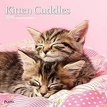 2016calendario de pared mensual–gatito Cuddles–por browntrout
