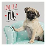 Love is a Pug: A Pugtastic Celebration of The World's Cutest Dogs