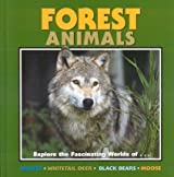 Forest Animals (Nature for Kids) by Laura Evert (2000-10-01)