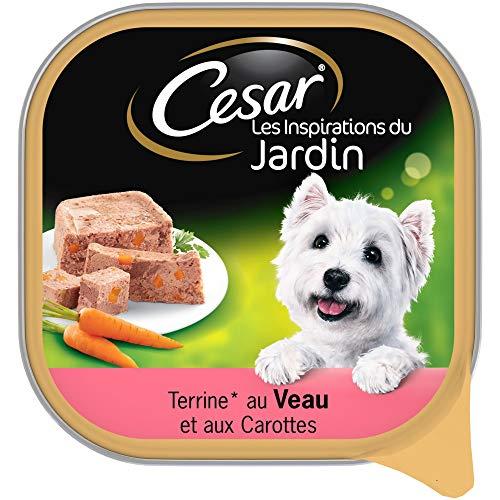 CESAR Les Inspirations du Jardin - Barquettes de veau en terrine pour chien adulte, 20 barquettes de 300g