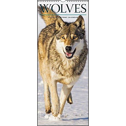 Wölfe Wandkalender Wölfe nach Kalendern Wolves Wall Calendar (Gladstone Kalender)