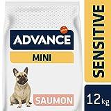 Advance Croquettes pour Chien Mini Adulte Sensible Saumon et Riz - 3 kg