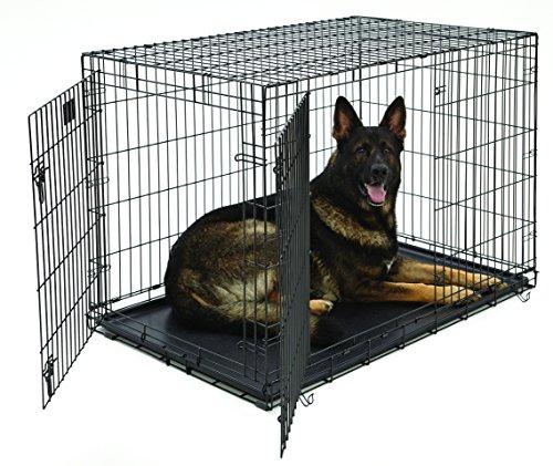 Artikelbild: MidWest Homes for Pets MidWest Life Stages Zusammenklappbare Hundebox mit zwei Türen, 121,92x76,2x83,82cm