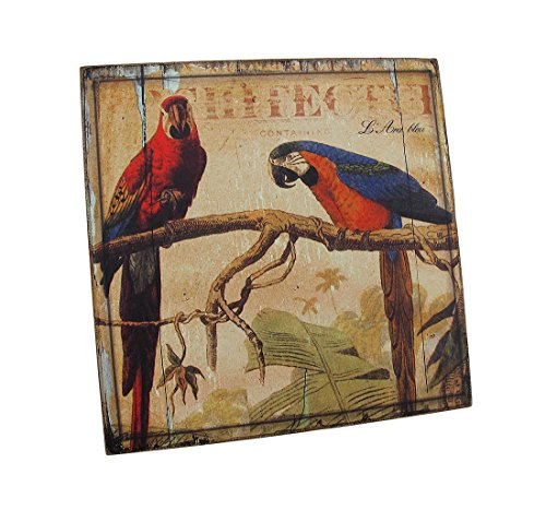 Weathered look Wooden Macaw Parrot Wall Plaque - Parrot Wall Plaque