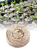 Foliner Bouchons de démarrage de semences Palette Semis Bloc de Sol Blocs de pépinière Outils de Jardinage pour la Maison Jardin extérieur Plantation