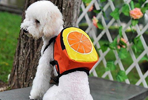 Mochila fruta para tu mascota llevara su agua, sus chuches sus toallitas y bolsas... y tambien tus cosas novedad en tiendas de mascotas peluqueria canina veterinario de OPEN BUY