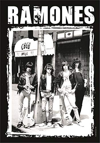 Ramones - Cbgb Photo Flagge