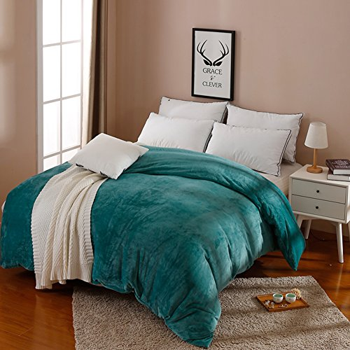HUIYUE Flanell Bettbezüge,1 stück-Set Bettbezug,Einzelstück Doppelzimmer Velvet Winter Warme Bettbezug-B 220x240cm(87x94inch) -