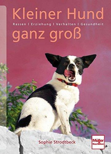 Kleiner Hund ganz groß: Rassen . Erziehung . Verhalten . Gesundheit (Antik-hund-bücher)
