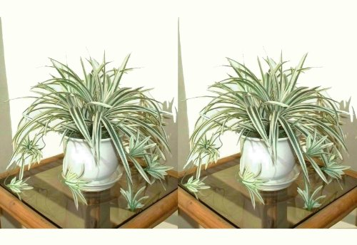 2-x-14-spider-plants-artificial-bushes-without-pots