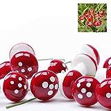 MAXGOODS 100 Stk Pilze Dekor Miniatur Puppenhaus Bonsai Garten Landschaft - Rot