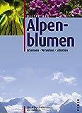Alpenblumen: Erkennen, Verstehen, Schützen