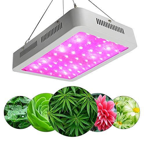 Ch Daisy (CH-LIGHT 600W Double Chips LED Wachsen Licht Vollspektrum Wachsen Lampe Pflanze Wachsen Lichter Seil Kleiderbügel Daisy Chain Indoor Greenhouse Hydroponic Pflanzen Wachsen,600W)