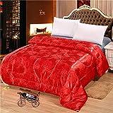 LBJNKBYX Winterbettdecke Extra Warm Bettdecke dauerhaft optimale Bauschkraft Gesunder Schlaf Einfache Pflege ähnlicher Liegekomfort formbeständig und reißfest ist,E,150 * 200cm