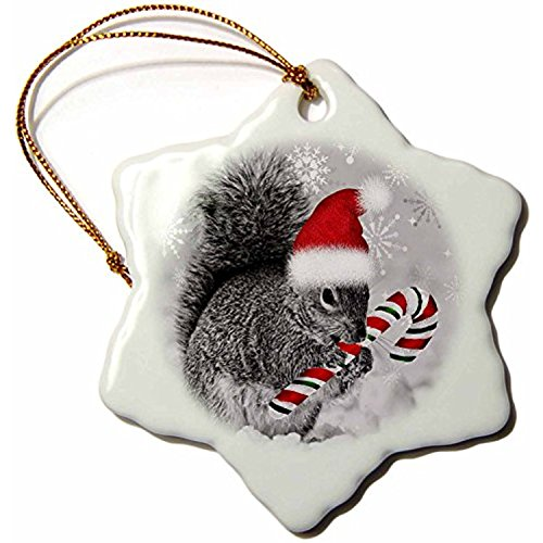 polpdid Orn _ 150177_ 1Cute Christmas Eichhörnchen Hat Eine Candy Cane und A Santa Hut in der snow-snowflake Ornament, 3Zoll, (Hut Candy Cane)