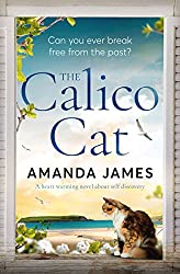 The Calico Cat: a heart-warming novel about self-discovery